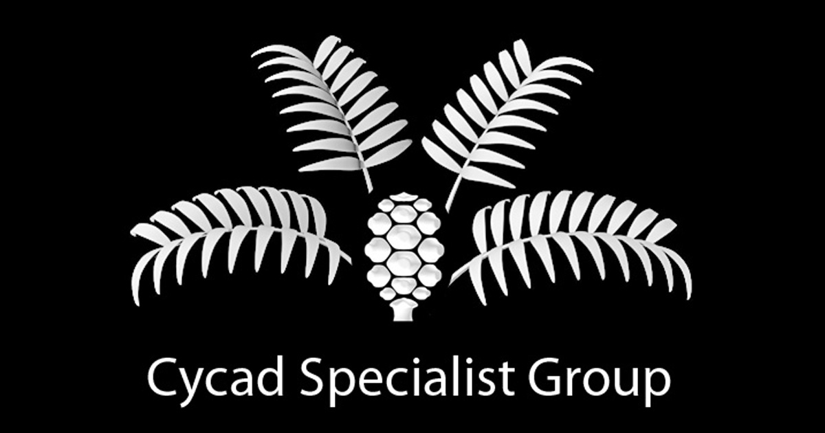 Cycad Specialist Group Members (2018) – IUCN / SSC Cycad Specialist ...